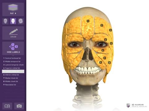 Interactive Anatomy - JO screenshot 2