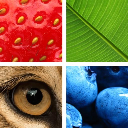 Quiz Pic: Close Ups iOS App