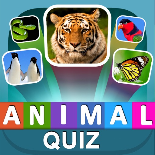 Questions Animals