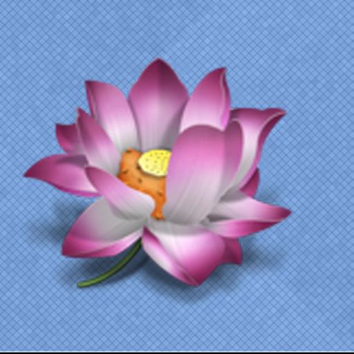 LotusView