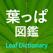 葉っぱ図鑑 - Leaf Dictionary -
