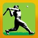 HomeRun Pro - Baseball Batting Average