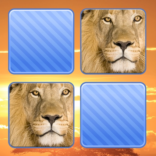 Memo Game Wild Animals Photo iOS App