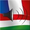 Magyar / Francia kifejezéstár - French / Hungarian phrasebook - Multiphrasebook