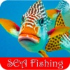 Sea Fishing - Popular Ways for Enjoying Deep Sea Fishing