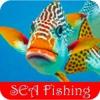 Sea Fishing - Popular Ways for Enjoying Deep Sea Fishing