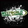 Westworld Paint Ball