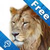 Zoo para Niños, sonidos de animales y fotos, el juego de animales para niños