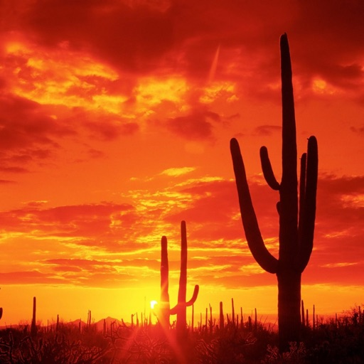 Arizona Wallpapers Hd Quotes Backgrounds With Art Pictures