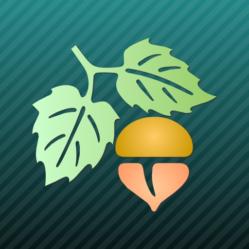 认识植物【专业图解】