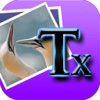 Text on Images - Write Beautiful Caption & Cute Fonts For Pictures