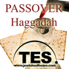 Haggadah Reader