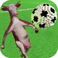 Goat N Cow 3D Soccer Multiplayer