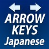 Arrow Keys Mail Japanese Keyboard