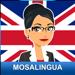 Apprendre l'Anglais Business avec MosaLingua