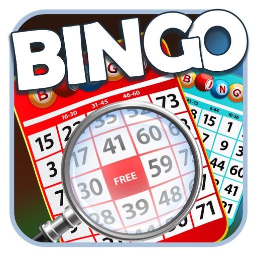 Online Bingo - 1,000,000 Free Chips iOS App