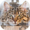 Ползуна игры - Slide Puzzle & Фотографии