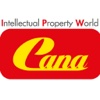 Intellectual Property World Cana protecting intellectual property