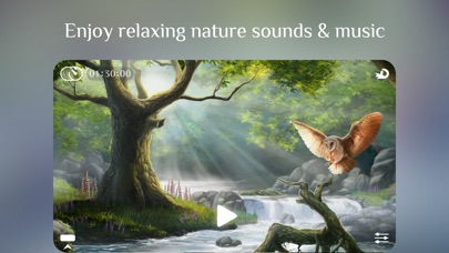 Screenshot Flowing ~ Meditation in Nature