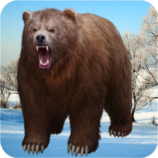 Wild Bear Animal Survival 3D iOS App