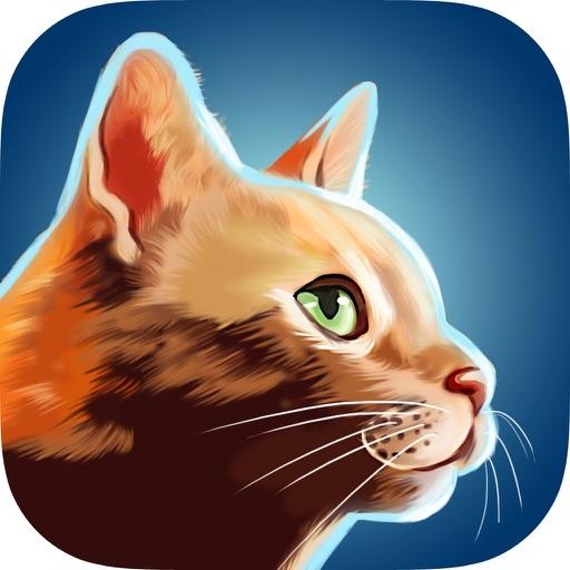 Cat Run - Кошачий побег