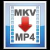 MKV2MP4