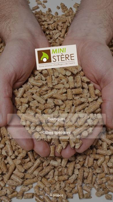 Capture d'écran de Mini-Stère1