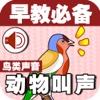 宝宝早教必备-动物叫声之鸟类篇—快乐家族幼儿启蒙教育声音识别