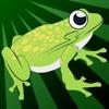 Crazy Frog Jumper Returns Pro - new fantasy jumping race game
