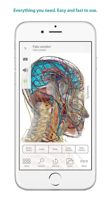 Atlas anatomy human body