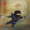 Ninja Floors