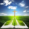 Die Bibel (nach der Übersetzung - Martin Luther 1545)