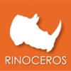 Rinoceros Groessen