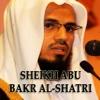 Abu Bakr Al Shatri Holy Quran - أبو بكر الشاطري هولي قرآن