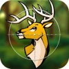 Big Buck Hunter Outdoor Adventures