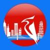 城市啄木鸟