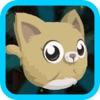猫跳跃游戏 - 最好的应用程序和趣味 上瘾的儿童游戏,上瘾的益智物理应用