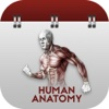 Full Docs for Human Anatomy