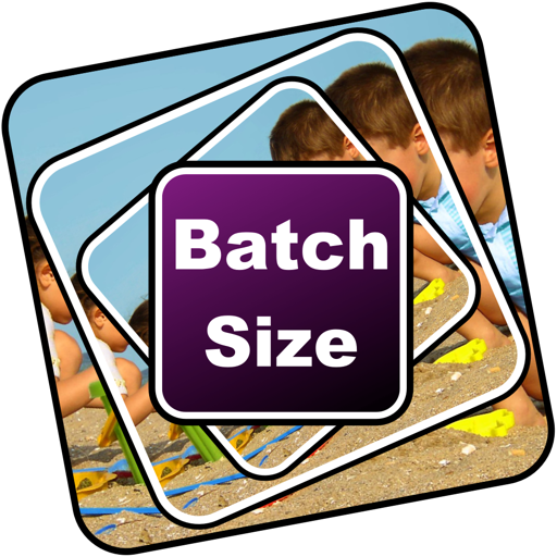 BatchSize