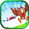 Danger Birds Flying - Air Traffic Mayhem