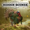 Hidden Scenes - Turkey Trot