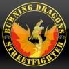 Burning Dragons Streetfighter