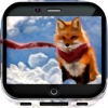 Fox Art Gallery HD – Artwork Wallpapers ,  Themes & Album Backgrounds
