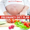 Pregnancy Diet Plan - High Protein Diet During Pregnancy