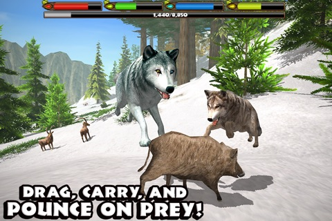 Ultimate Wolf Simulator screenshot 3