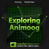 Course For Animoog synthesis