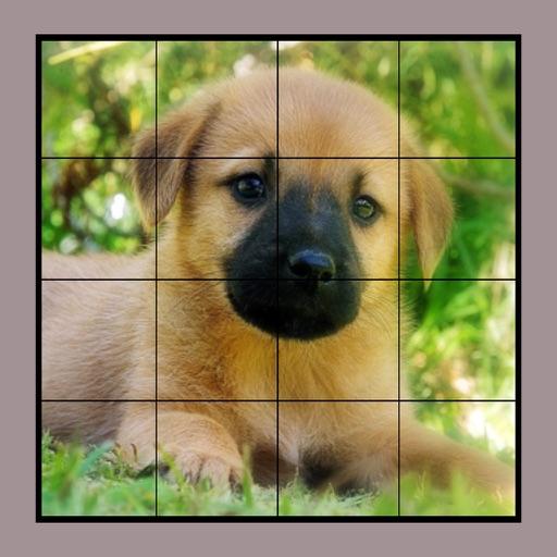 Dog Puzzles Extreme! 2 Icon