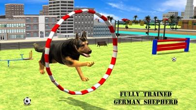 Screenshot of Città Eroe Dog Rescue1