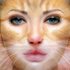 Animal Face Animation - Funny Movie Maker With Blend,Morph & Transform Effect