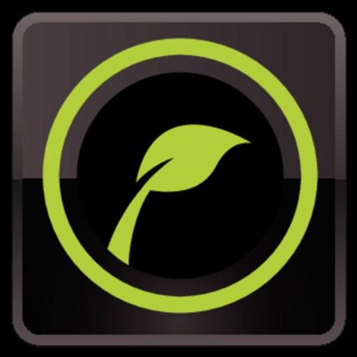 植物图鉴:Leafsnap